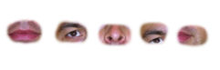 prosopagnosia-07 - face samples