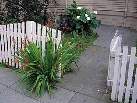 Flowers and a gate in a picket fence.
