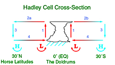 Hadley cell cross section.