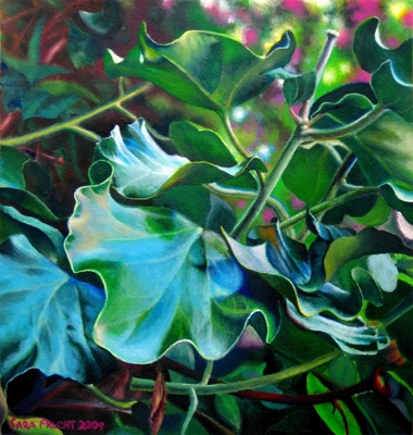 Ivy - Painting by Sara Frucht