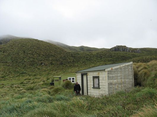 A place to live in the Antipodes.
