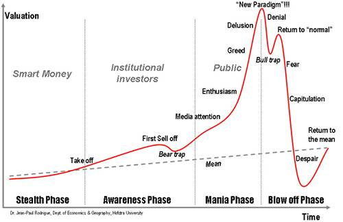life cycle of enthusiasm for a new public idea