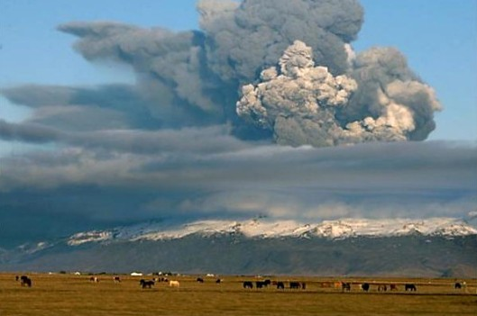 Iceland volcanic eruption with horses