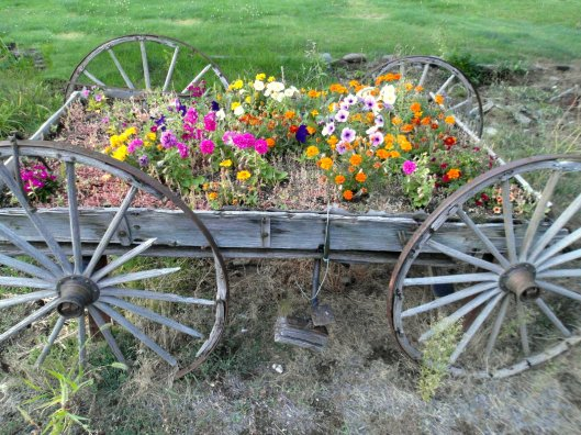 A wagon used as a flower box in Bend, Oregon