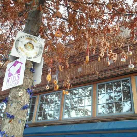 Donuts hanging in the trees in Bend OR