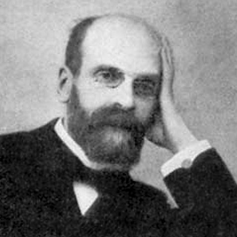 a biography of emile durkheim as the father of sociology and an influential french sociologist Durkheim described sociology as the  that accounts of durkheim's positivism are possibly  and dimitri pisarev Émile zola was an influential french.