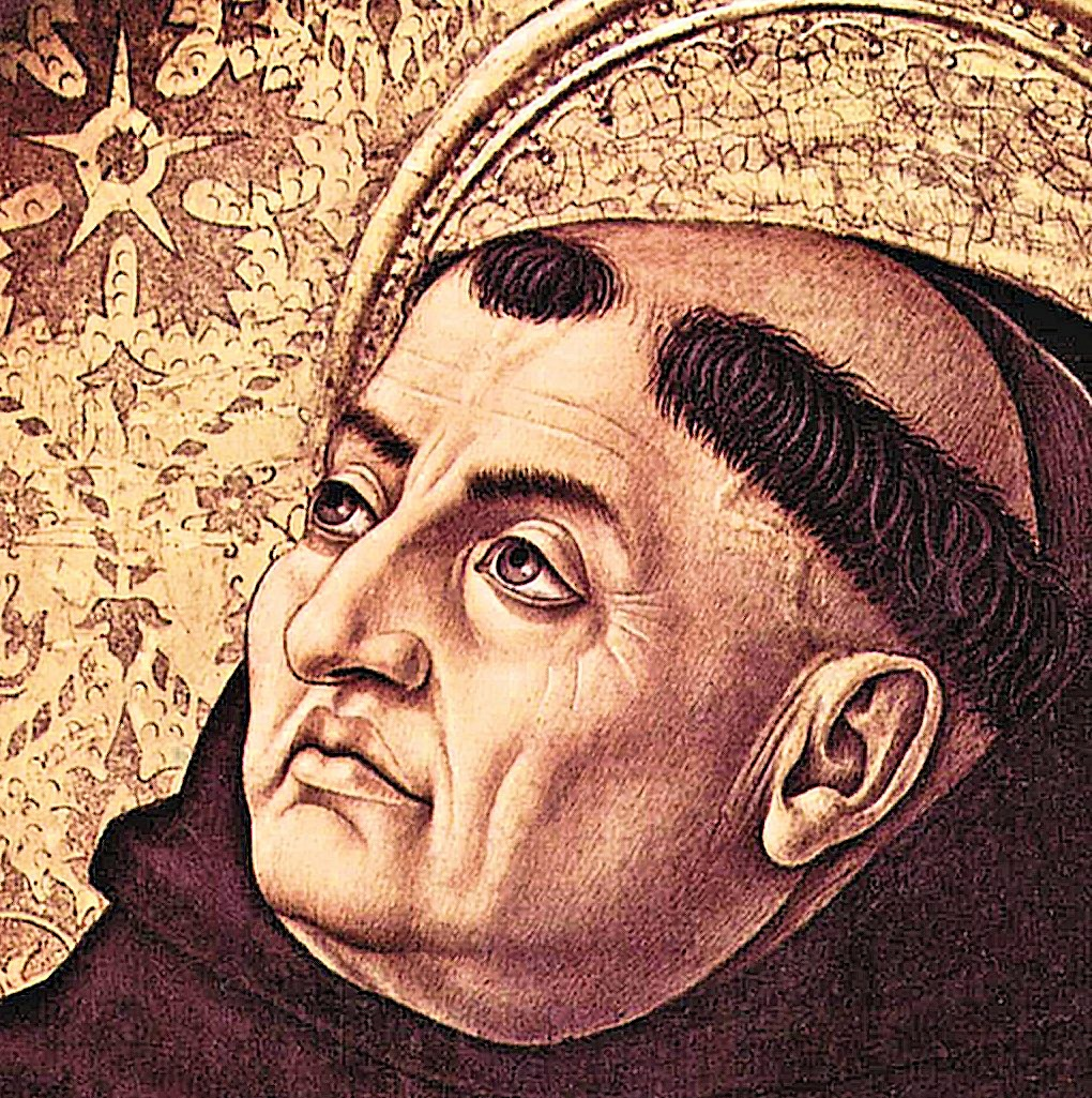 thomas aquinas the social encyclopedia thomas aquinas philosophers squared thomas aquinas probaway life hacks