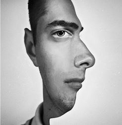 Two faces in one picture optical illusion