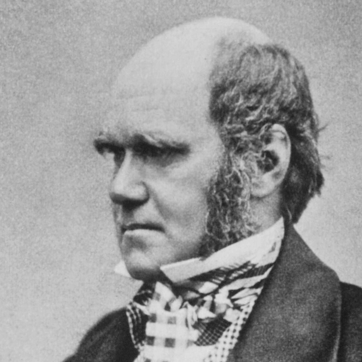 Good leading sentence for a science (Charles Darwin) essay?