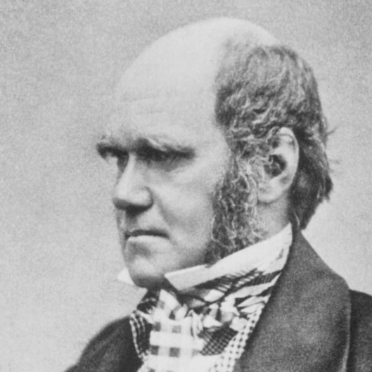 Charles Darwin 1854