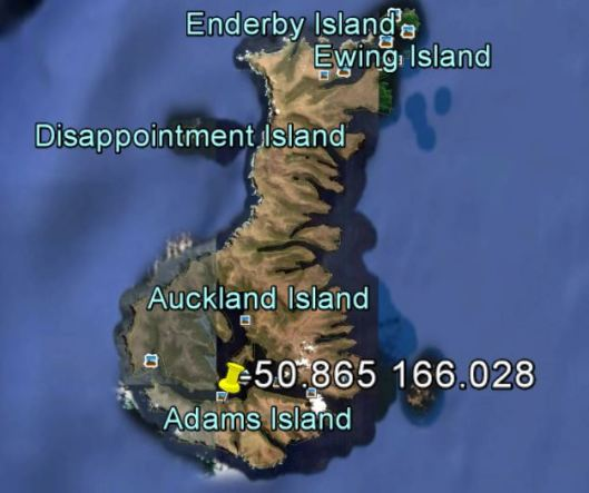 Adams Island bay at -50.865 166.028 would be a good place.