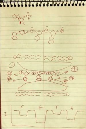 Deamer's original sketch of a method for transferring proteins thru a channel