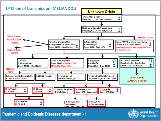 The first cases of Ebola Meliandou