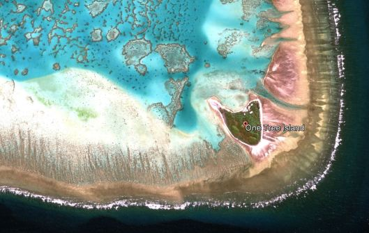 One Tree Island in the Great Barrier Reef, Australia lat/lon -23.508, 152.091