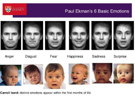 6 facial emotions