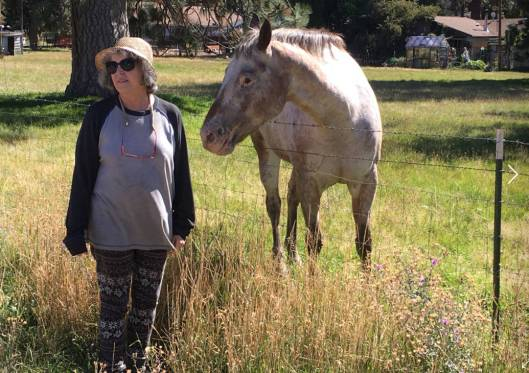 A woman named Debbie and a horse named Clancy