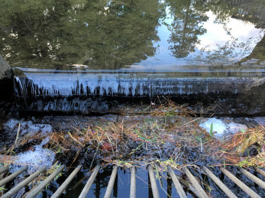 Hollinshed park irrigation ditch