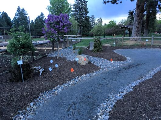 A garden path with design rocks